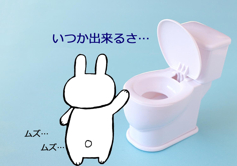 初めてトイレで出来た時の様子はこんな感じ☆2才後半