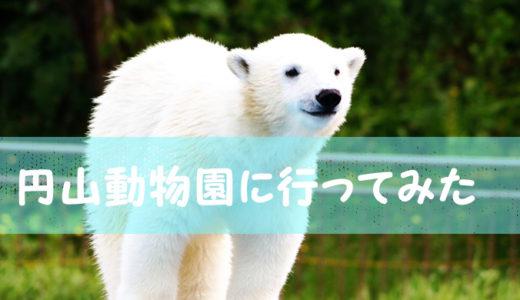 円山動物園のコロナ対策はバッチリです!【マスクゾーン設置】