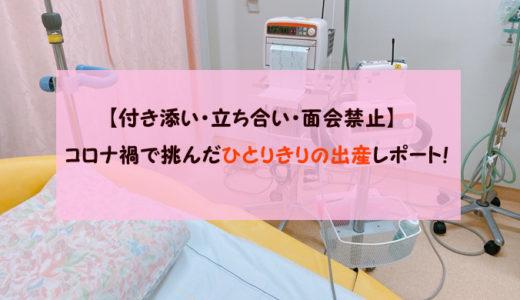 【立ち合い禁止】コロナ禍で挑んだひとりきりの出産レポート!